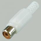Гнездо RCA белое пластик,  на кабель