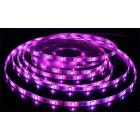 Светодиодная лента, негерметичная, 5050 30 Led, RGB
