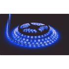 Светодиодная лента, герметичная, 3528 60 Led, цвет: синий