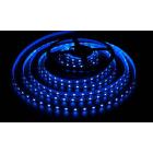 Светодиодная лента, негерметичная, 5050 60 Led, цвет: синий